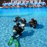 Elc dive in is in category Business in Larnaca - Become a Professional Scuba Diving Instructor? Working around the world in your 'idealchoice' location? Securing that idyllic tropical contract? Waking up each morning to the sounds of the lapping waves and the cool breeze coming in